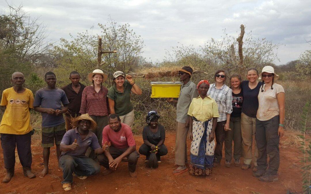 Wir unterstützen elephantsandbees.org