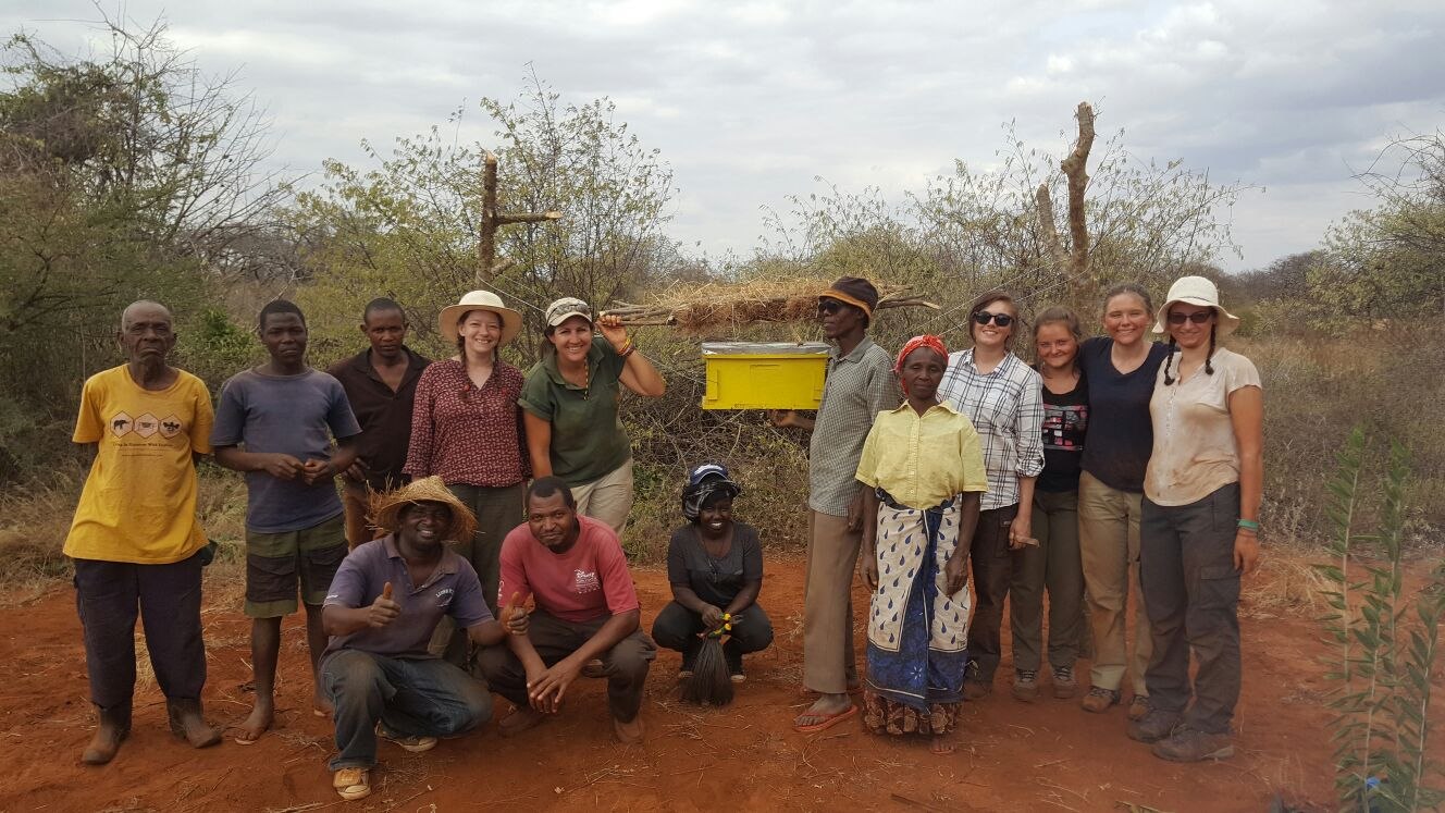 Elephants and Bees Project Grouppicture